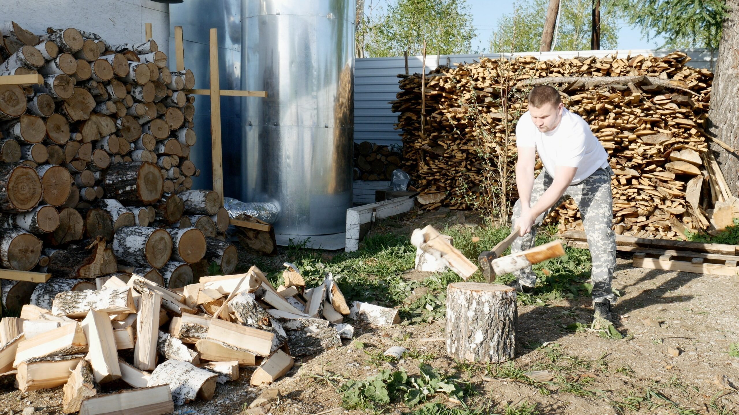 If you will be collecting wood for your fireplace, check its moisture before burning it